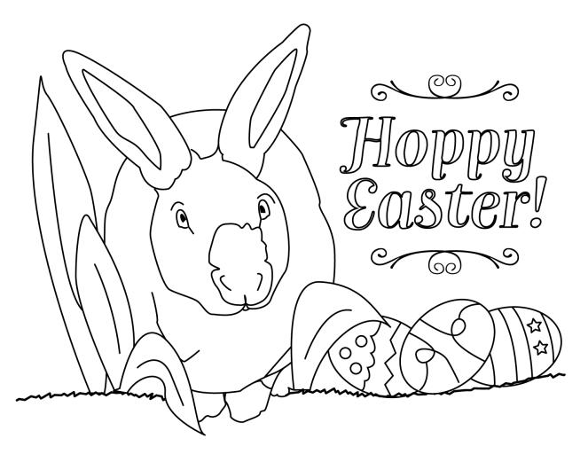 bunny-02